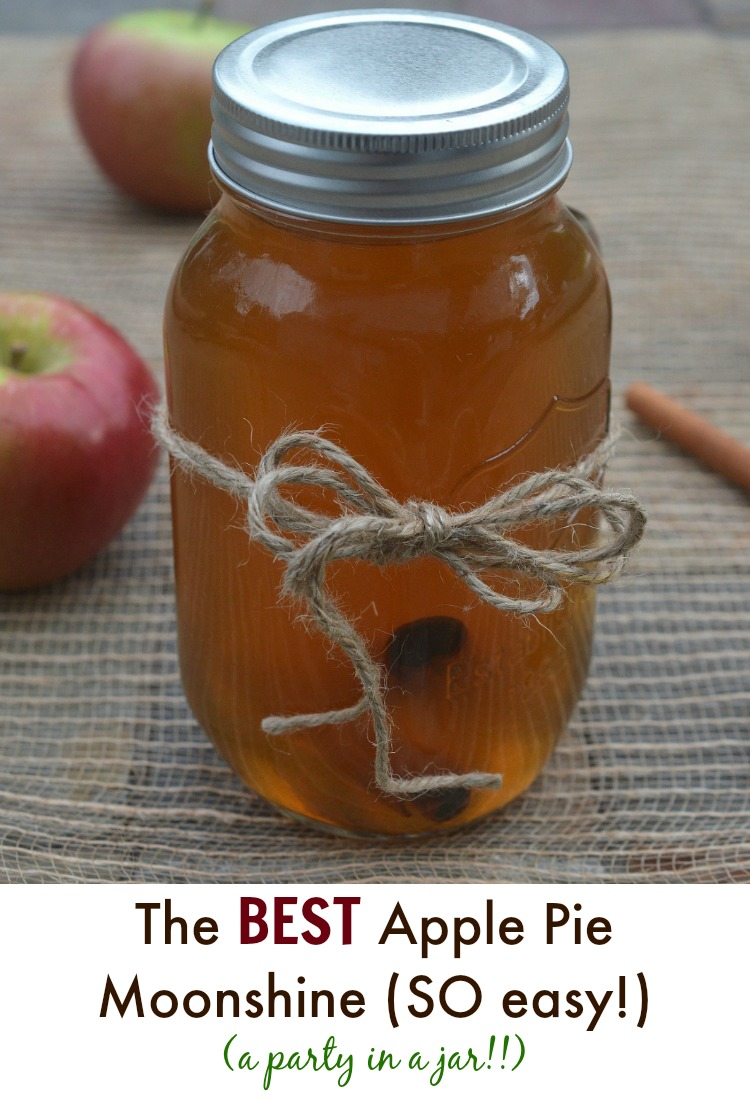Easy DIY Apple Cider Moonshine