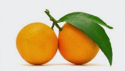 fruit for winter sangria