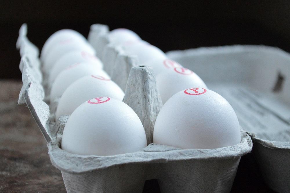 Davidson's Safest Choice Eggs