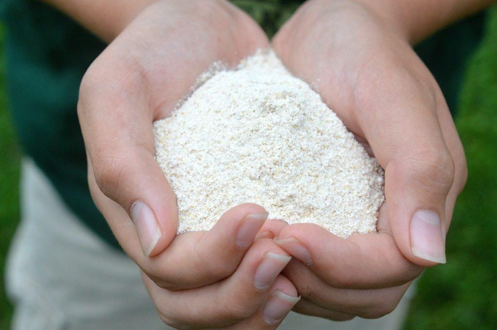 Freshly Ground Whole Wheat Flour