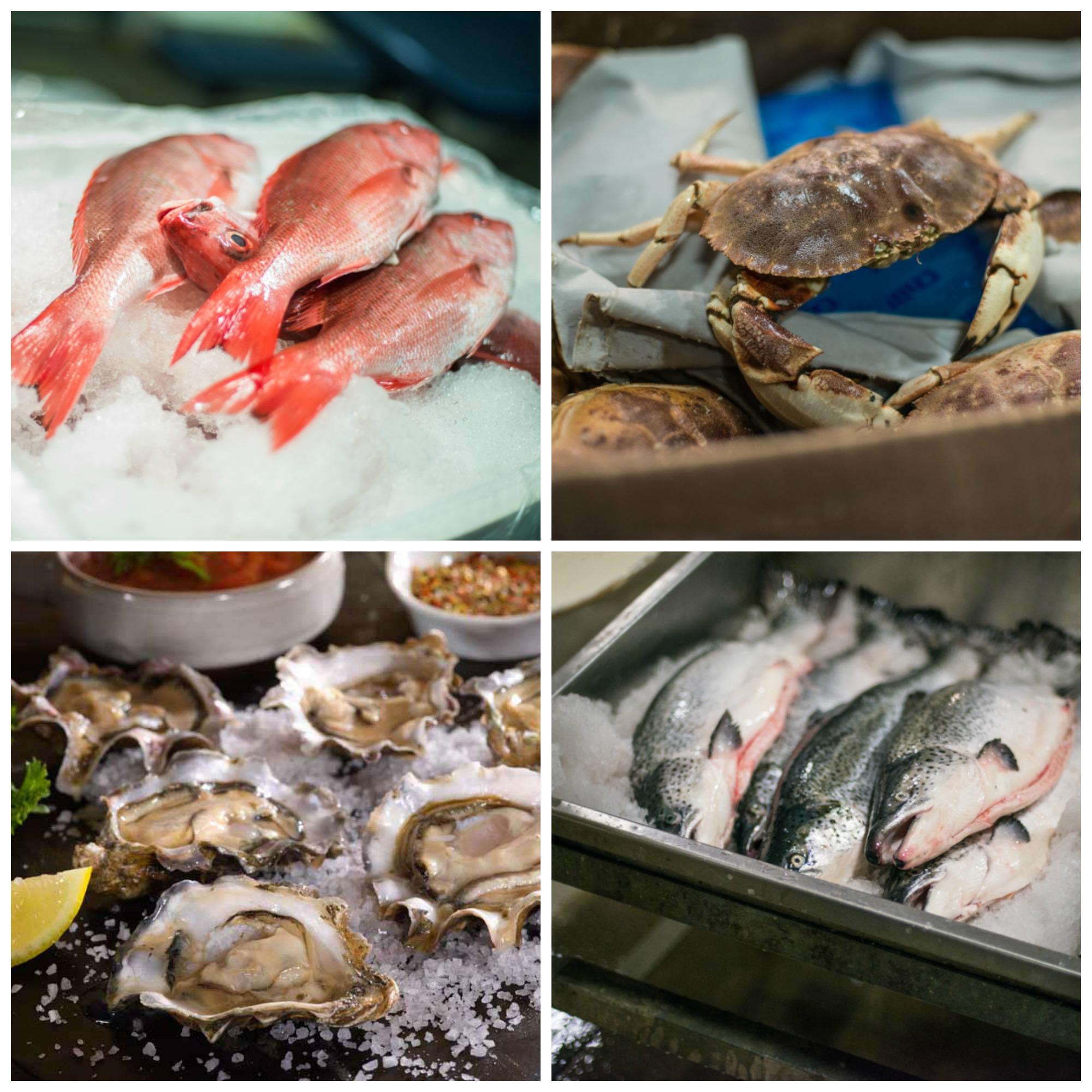 FultonFishMarket.com fresh fish selection