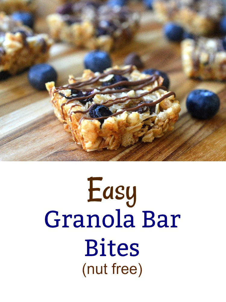 Easy Granola Bar Bites with Dried Blueberries and Chocolate (customize them as you wish) Nut free