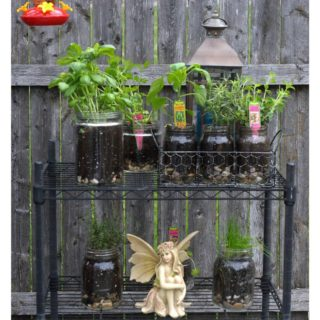 How to create an easy indoor outdoor glass jar garden.