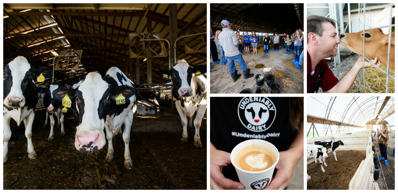 NYDairyTour18 Farm Visits