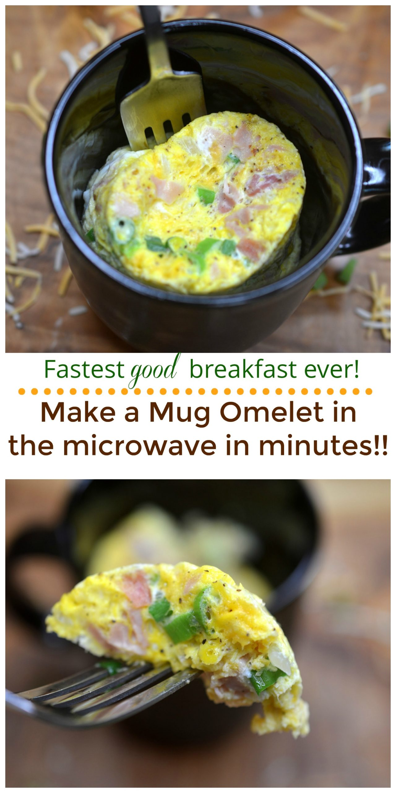 Delicious 5 Minute Microwave Omelet